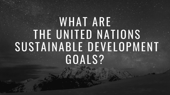 What are the United Nations Sustainable Development Goals?